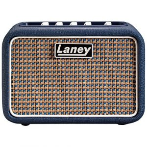 Video Review : Laney Mini Lion Practice Amp MP3 and FXs